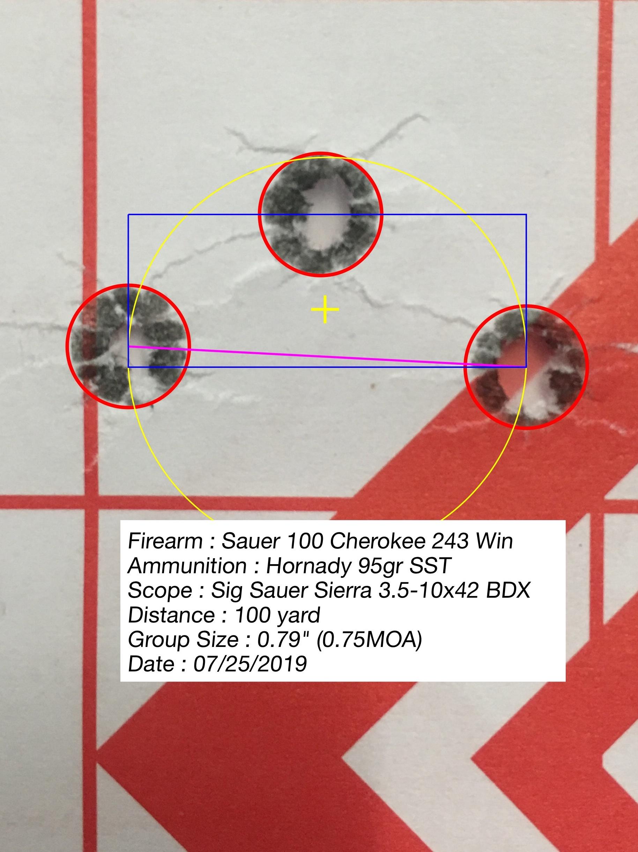 Sauer 100 Cherokee - 243 Win & SIG Sierra BDX 3 5-10x42 & SIG 1400 BDX  Rangefinder